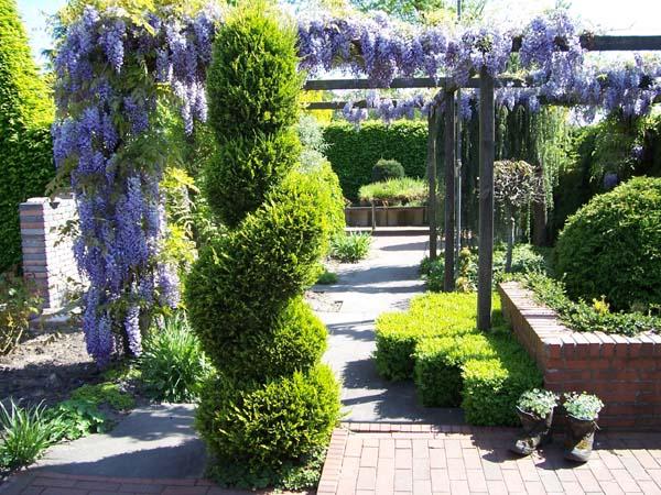 hollweger traumgarten gartenplanung und gartenarchtitektur
